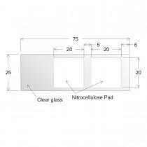 ONCYTE® Nitrocellulose Film Slides-20 x 20 (sku 305002)