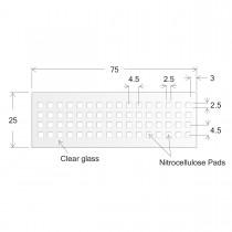ONCYTE® Nitrocellulose Film Slides-2.5 x 2.5 (sku 705064)
