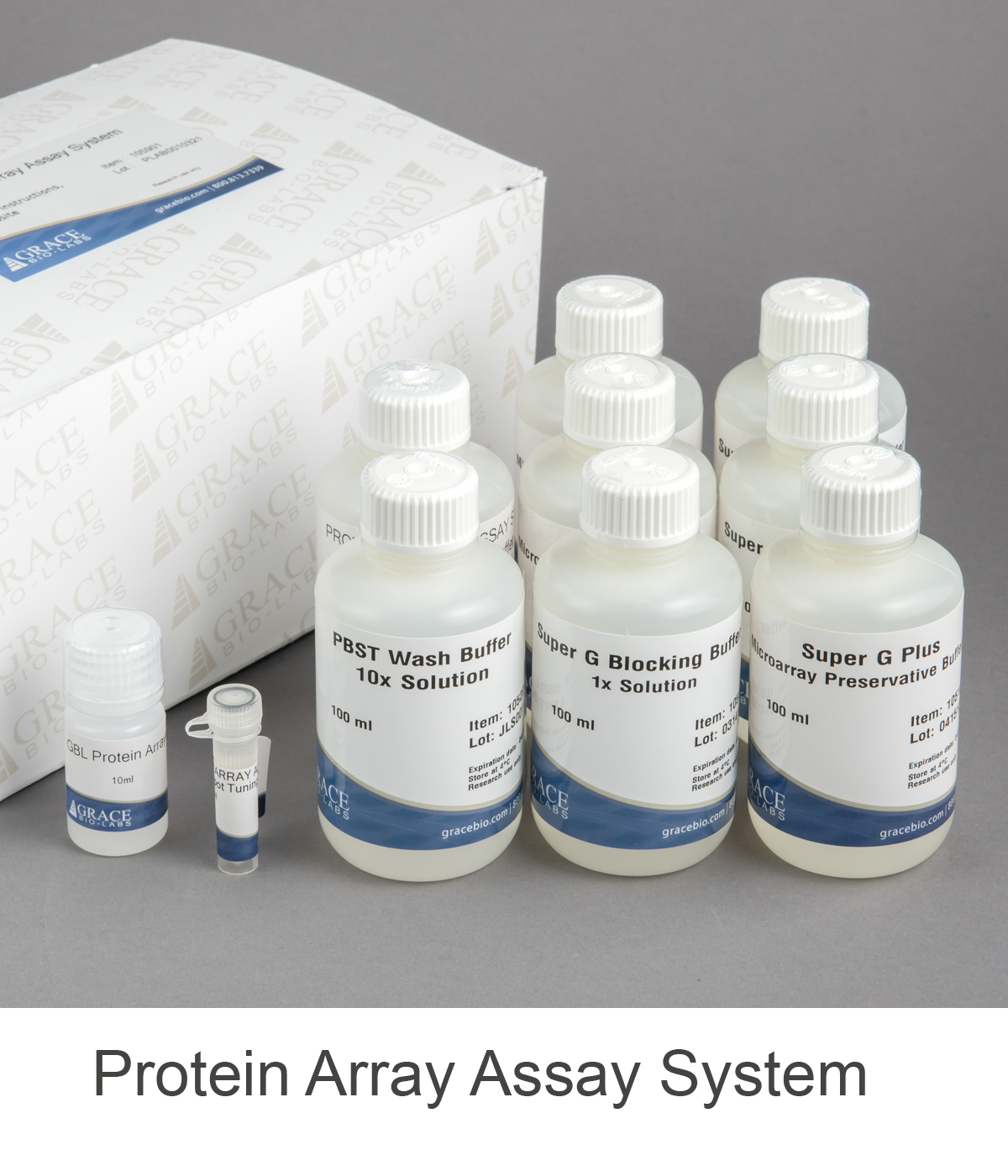 Protein Array Assay System